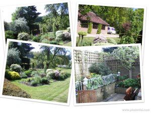 Nick Meade - All Seasons Gardening interview 2