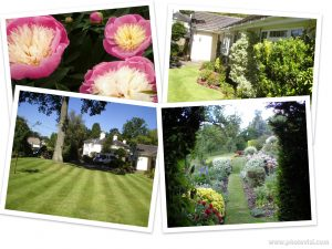 Nick Meade - All Seasons Gardening 1