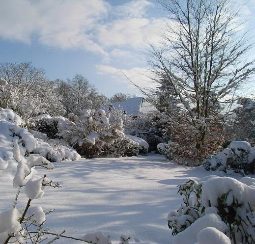Season's Greetings from taxhelp.uk.com